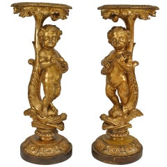 Pair of Louis XV Gilt Cherub Pedestals