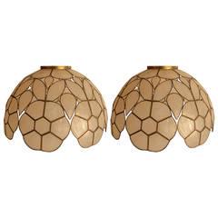 Pair Capiz Shell Lamp Shades
