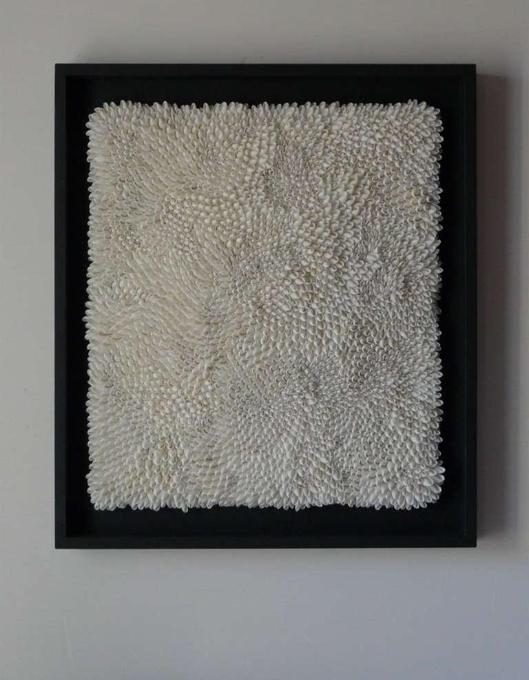 Original art work in bubble shell, circa 2013. Temporarily on exhibit.