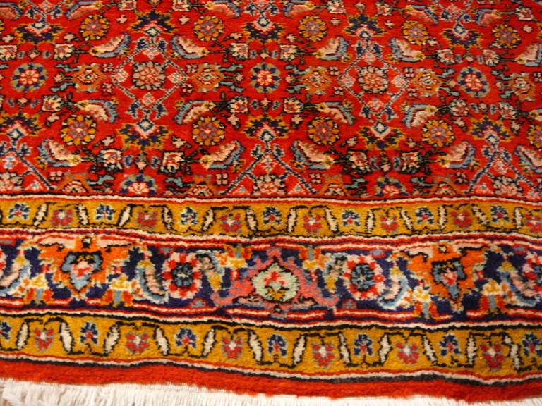 Old brickred Bidjar rug 3