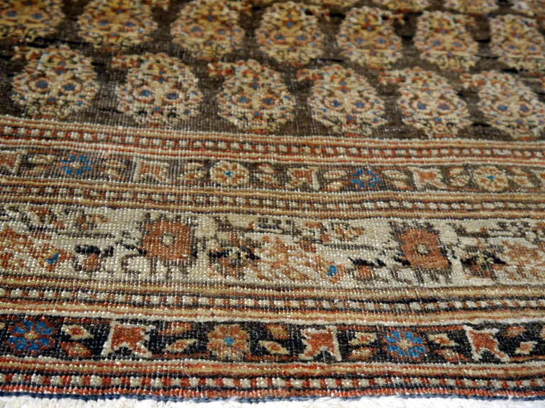 Antique Kayseri Rug 6