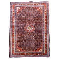 Oversize Exquisite Antique Persian Bidjar