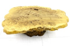 Large Tree Trunk Coffee Table, 1970s