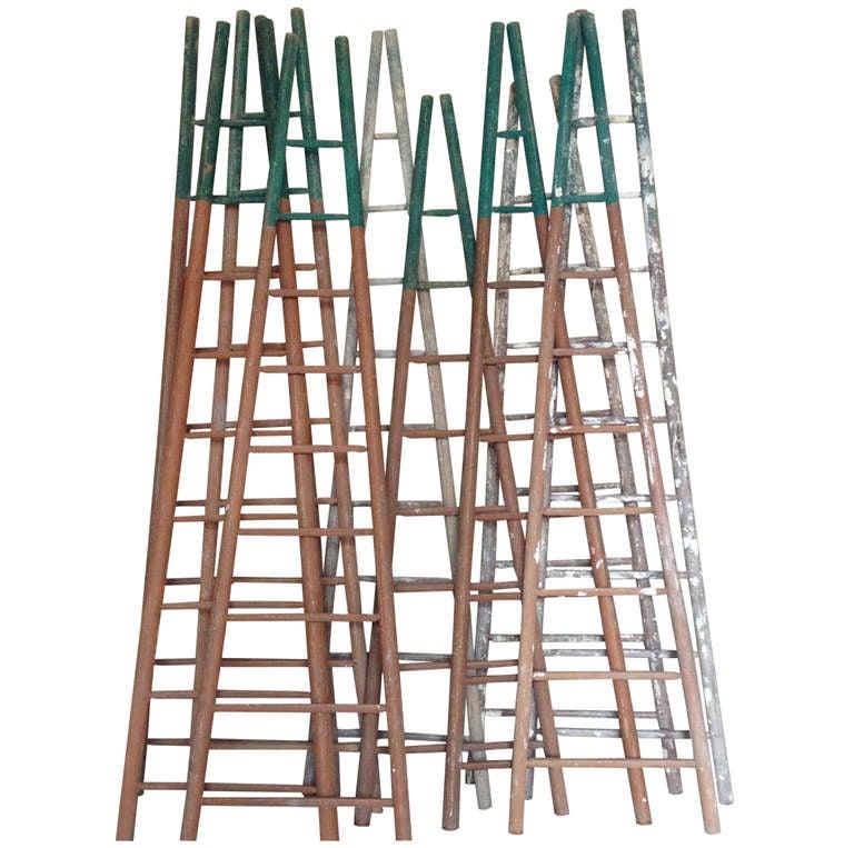 Set of Ten 19th Century Ladders