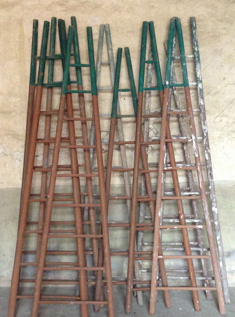 a super set of 10 wood ladder from a french painter from the end of 19th   very nice colors and time patina  Dim= H 300 x 80 cm
