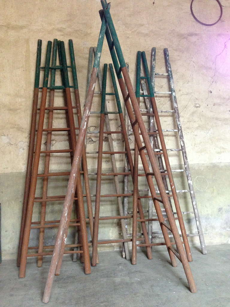 Set of Ten 19th Century Ladders 3
