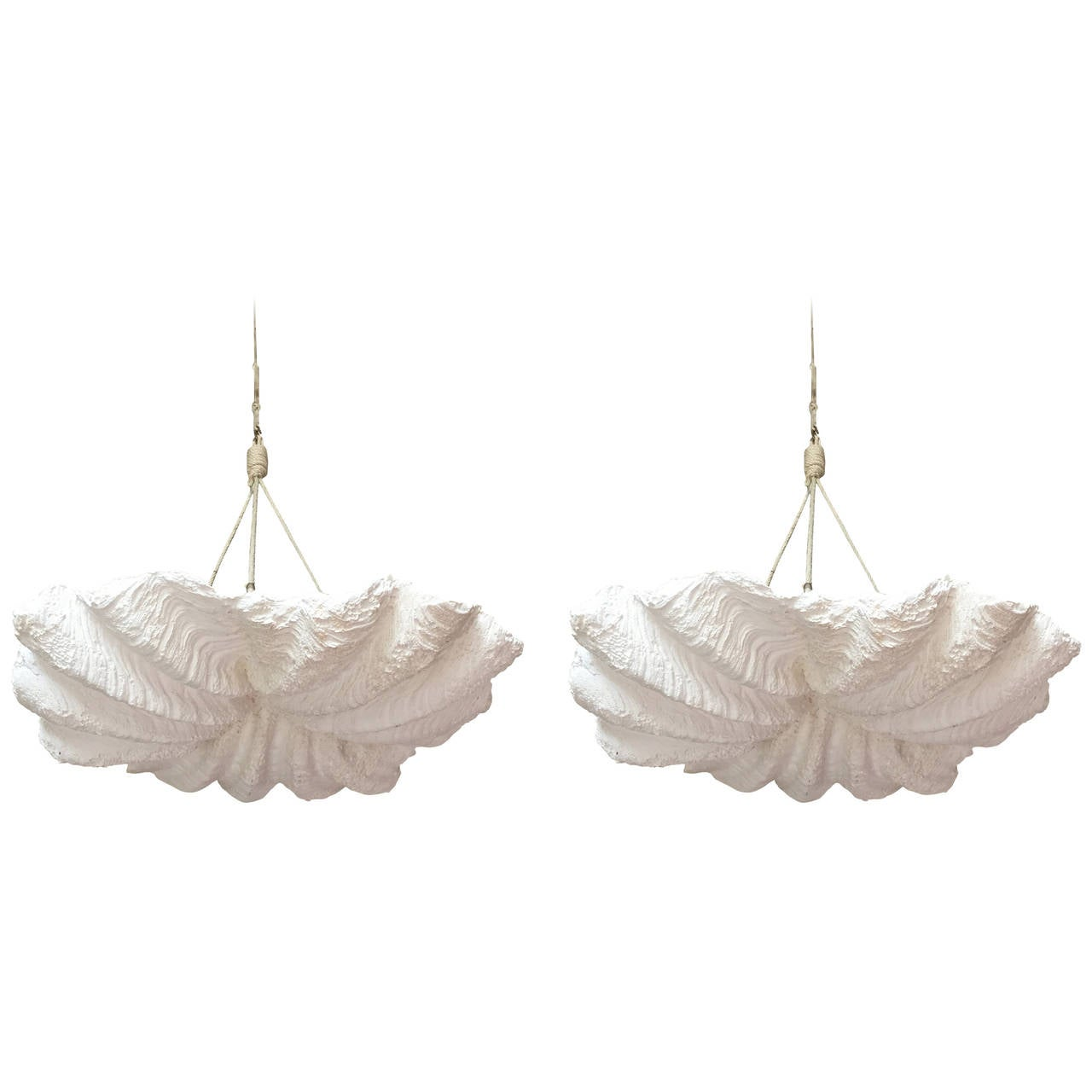 Pair Of Plaster Shell Chandeliers At 1stdibs