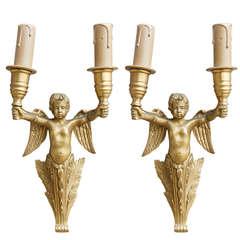 Pair of Gilt Bronze Sconces with Winged Cherubs