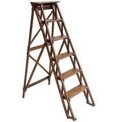French Library Ladder
