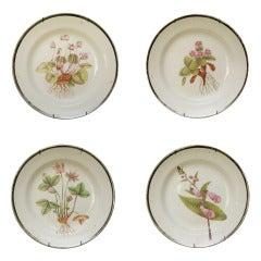 Set of Four Swansea Creamware Botanical Dessert Plates