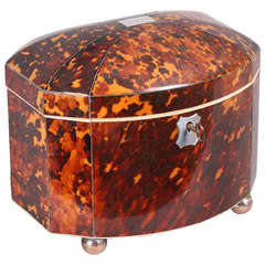 Fine Regency period tortoise-shell bow-fronted double tea-caddy