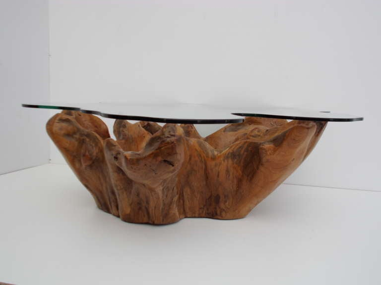 Stunning Vintage Teak Root Coffee Table With Custom Cut Glass Top At 1stdibs