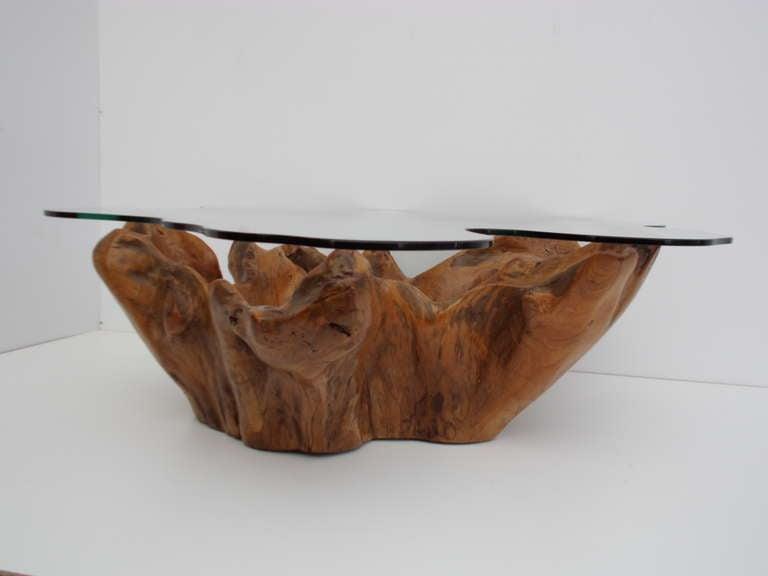 Marvelous Stunning Vintage Teak Root Coffee Table With Custom Cut Glass Top Download Free Architecture Designs Sospemadebymaigaardcom