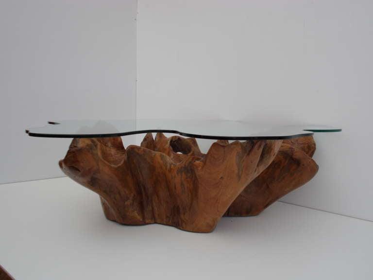Stunning Vintage Teak Root Coffee Table with Custom Cut ...