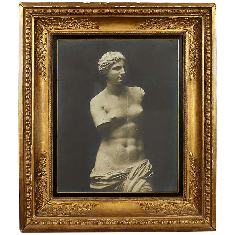 Early 20th Century Framed Venus de Milo Photograph For Sale