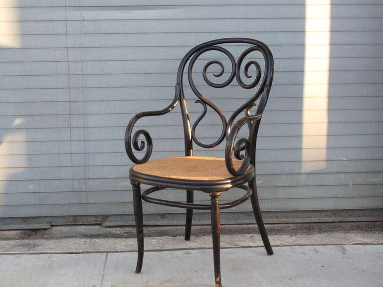 Thonet Cafe Daum Bentwood Armchair No. 4 With Cane Seat And Ebonized Frame.  Marked