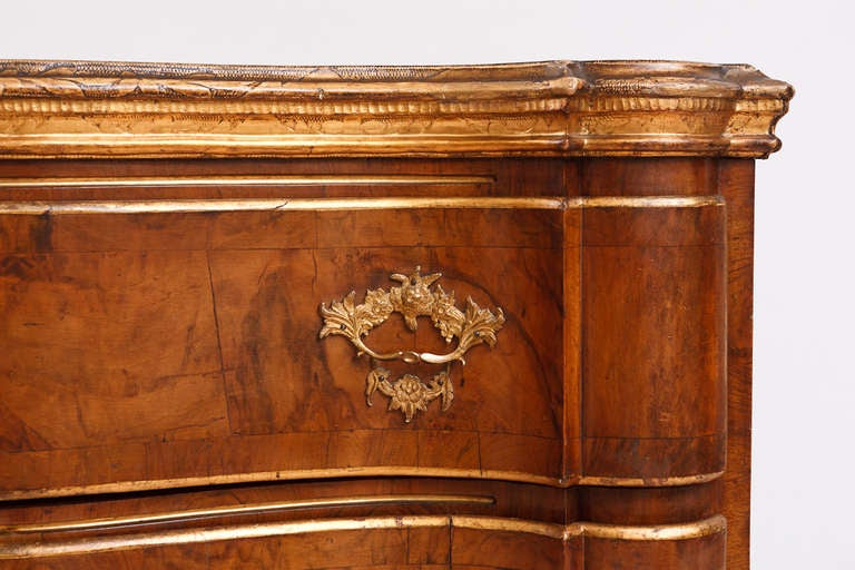 Hand-Carved 18th Century Baroque Chest of Drawers in Burl Walnut w/ Embossed Gilding For Sale