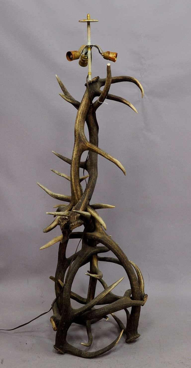 large rustic black forest antler floor lamp for sale at. Black Bedroom Furniture Sets. Home Design Ideas