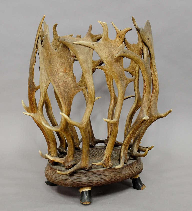 German Antique Black Forest Antler Basket For Sale