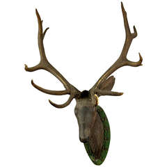 Antique Black Forest, Carved Wood Stag Head