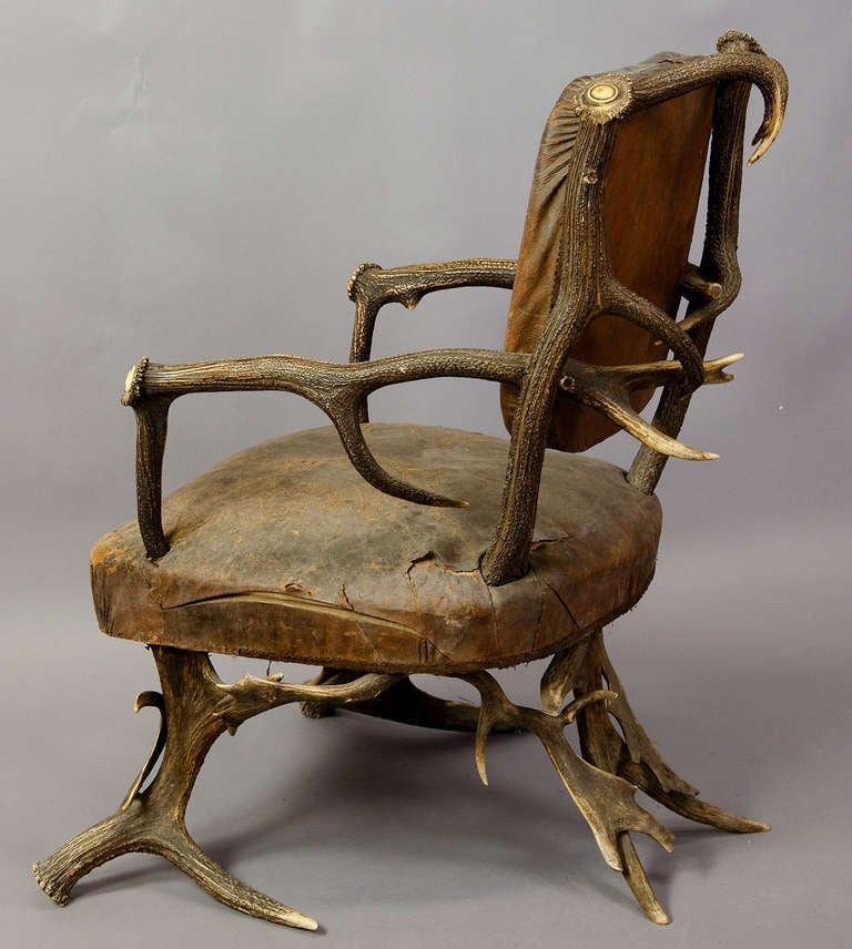 Antique Black Forest Antler Arm Chair, Austria 1890 4