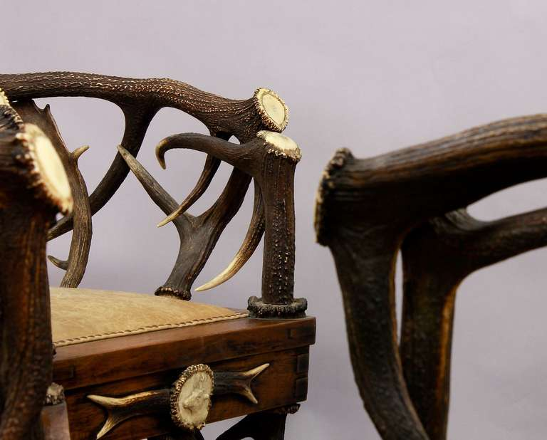 Wood Set of Four Black Forest Antler Armchairs, circa 1900 For Sale