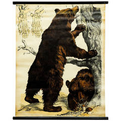 Vintage Wall Chart, Scenery with Grizzly Bears from German School