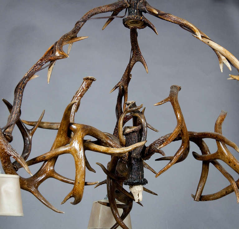 Great Antler Chandelier With Figural Carved Horn Roses Ca