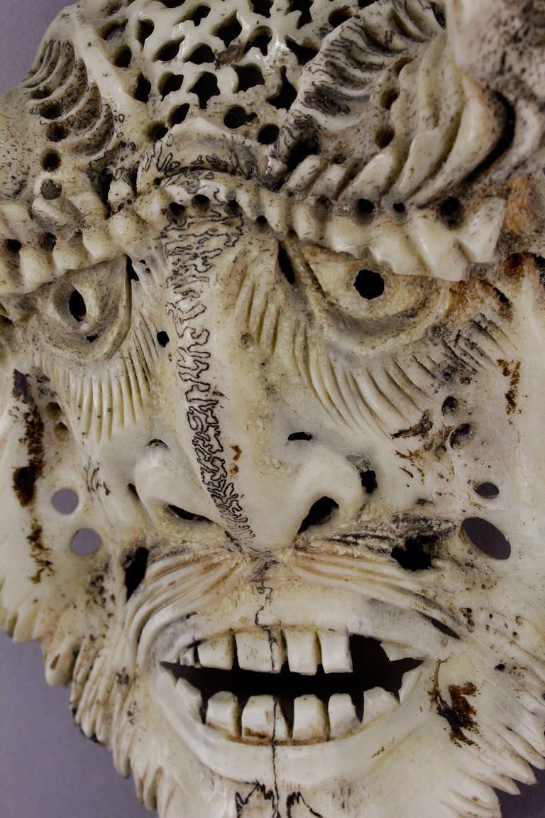 A set of three impressive carved deer skulls at stdibs