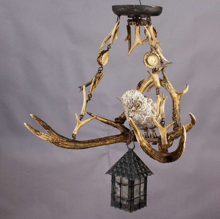 Antique Black Forest Antler Chandelier With Owl Statue 2 & Antique Black Forest Antler Chandelier With Owl Statue at 1stdibs azcodes.com