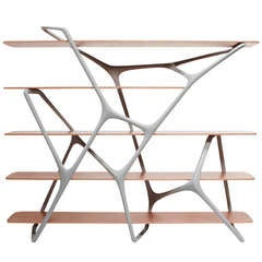 'Naturoscopie I,' Organic Bookcase and Room Divider by Noé Duchaufour-Lawrance