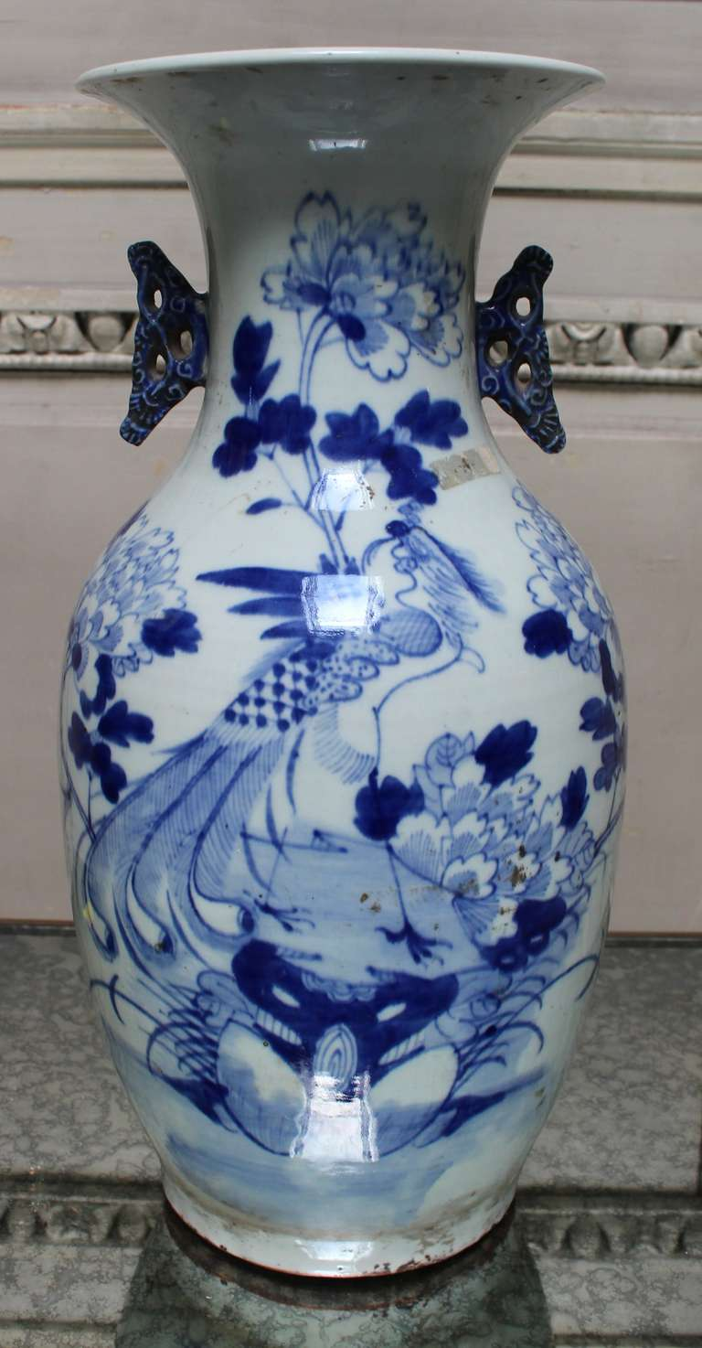 Blue And White Chinese Porcelain Vase With Peacock And