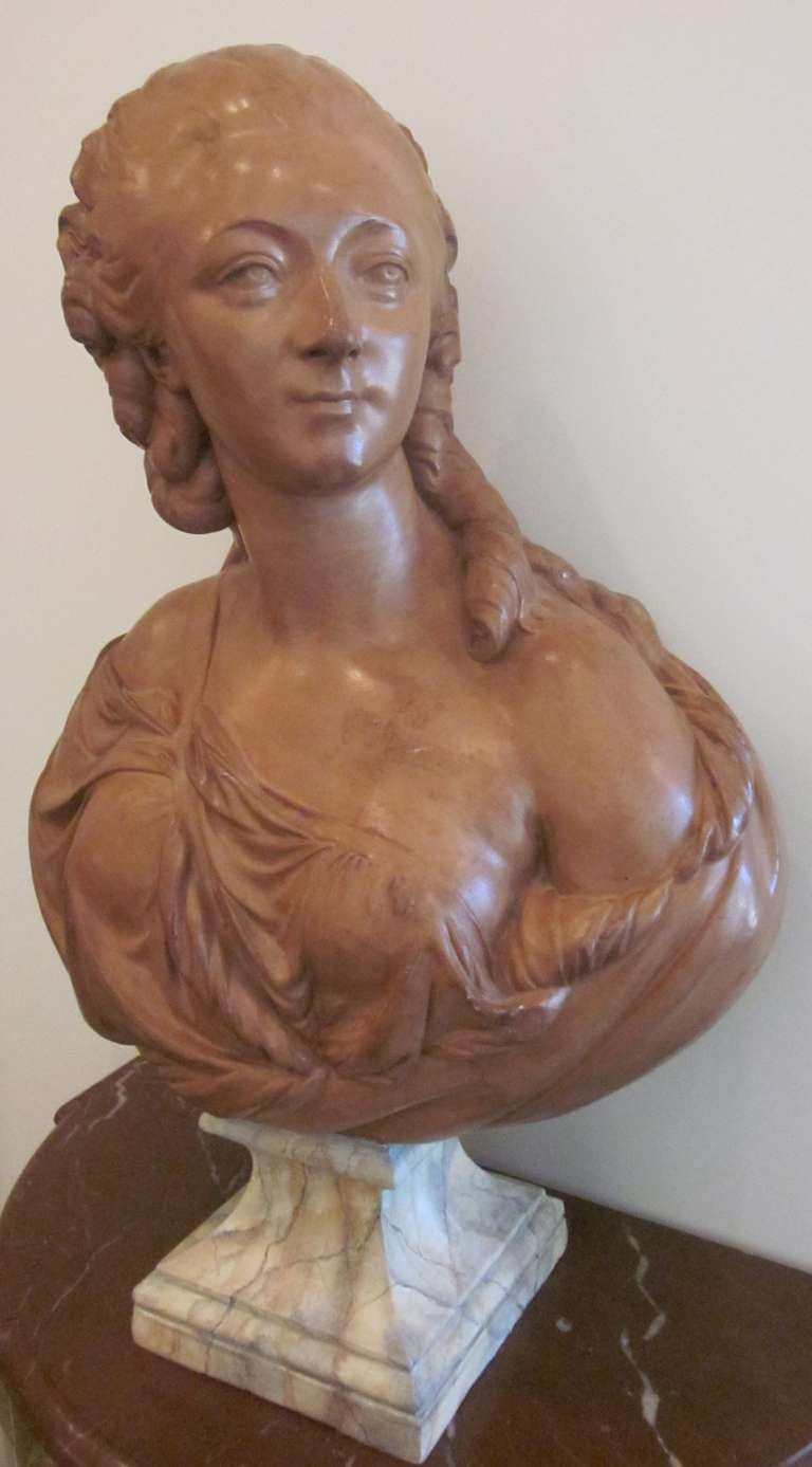 French Terracotta Bust of Madame du Barry For Sale 1