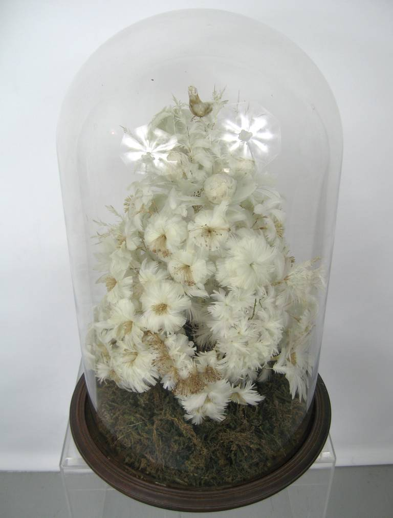 Victorian White Feather Tree under Glass French Globe de Mariee 2
