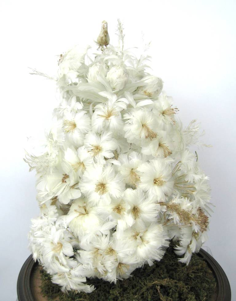 Victorian White Feather Tree under Glass French Globe de Mariee 3