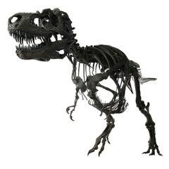 Complete Life-Size Dinosaur (Gorgosaurus) Skeleton Cast