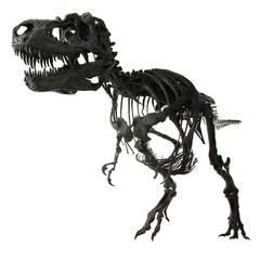 Complete Gorgosaurus Cast