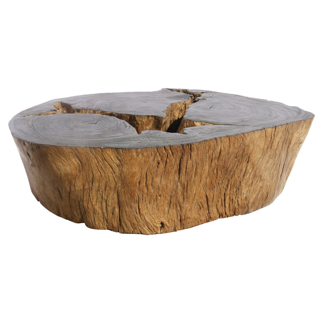 20th Century Round Natural Root Coffee Table At 1stdibs