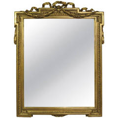 19th Century French Giltwood and Gesso Mirror