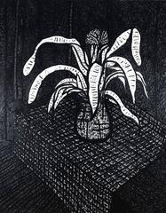 Still Life, Plant on Table, 1975