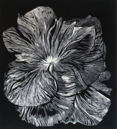 Bratek - XXI century, Linocut, Flower, Figurative Art, Black and white