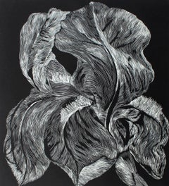 Iris Aphilla - XXI century, Linocut, Flower, Figurative Art, Black and white
