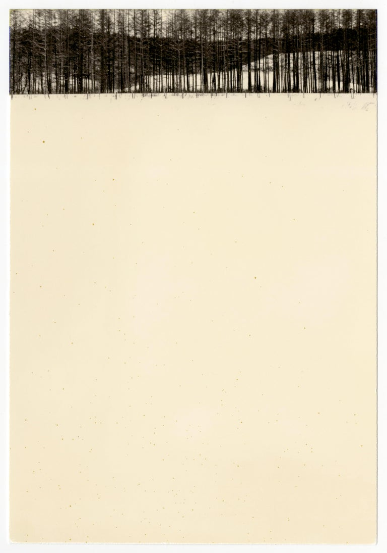 Yamamoto Masao, #845, from Nakazora, gelatin silver print, 1998