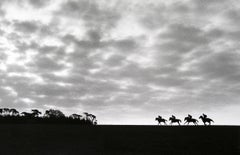 Norman Mauskopf, Newmarket, England 1988, (horses in countryside)