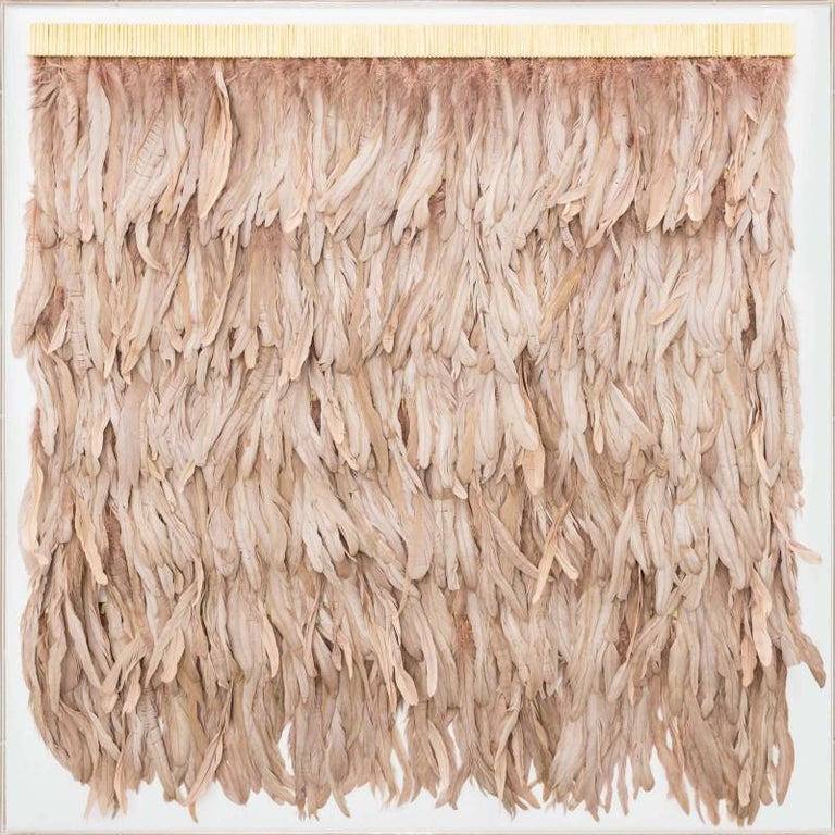 Rose Gold Feathers, Icarus Collection, Specimen