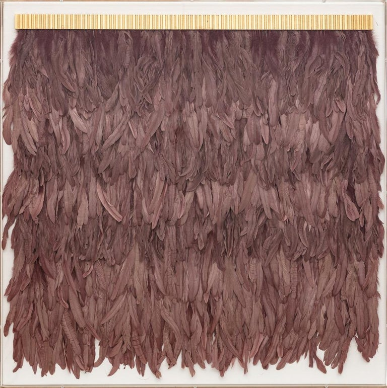 Mauve Feathers, Icarus Collection, Specimen