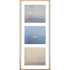 Birds of Flight, No. 2, gold leaf, framed