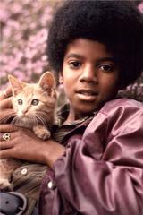 Michael Jackson with Kitten, 1971