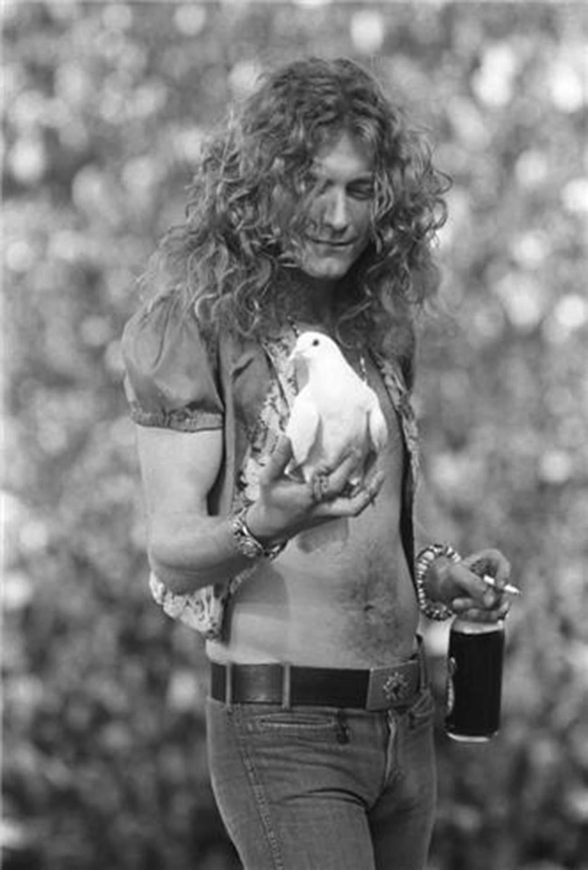 Neal Preston Robert Plant San Francisco Ca 1973 For