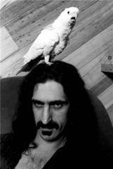 Frank Zappa, Los Angeles, CA 1979